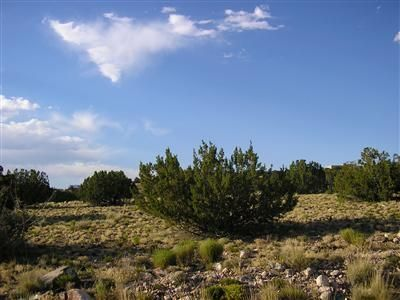 Windmill Trail, Placitas, NM 87043