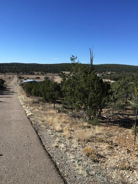 39 Alta Vista, Tijeras, NM 87059
