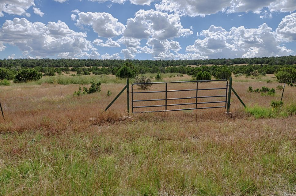 44 Brannan Road, Tijeras, NM 87059