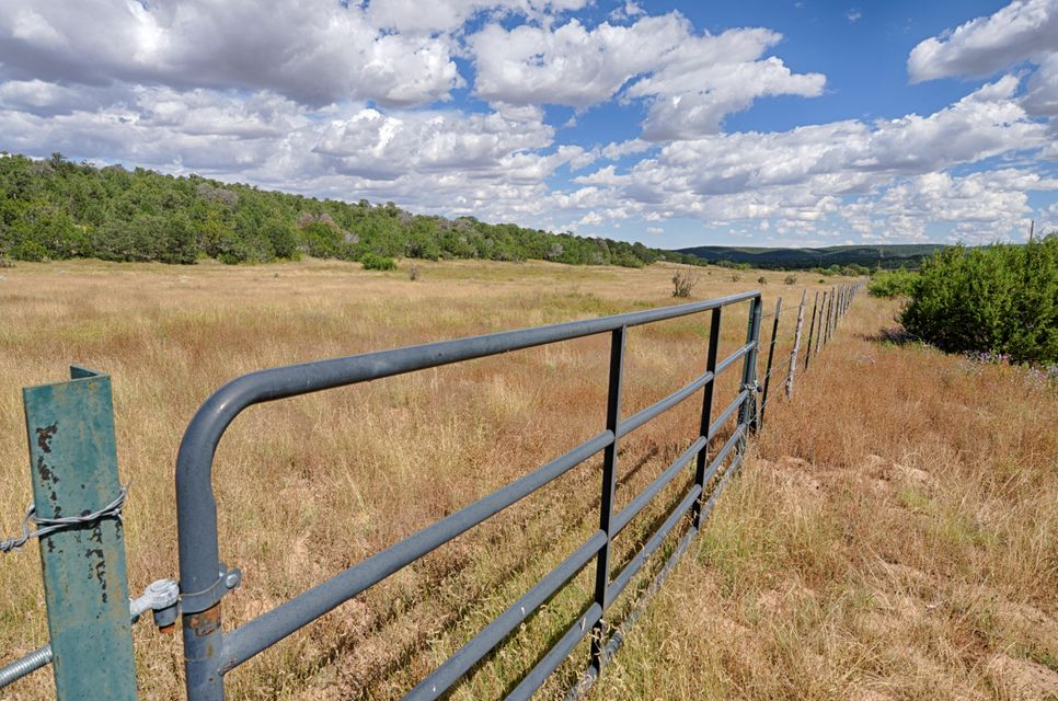 20 Brannan Road, Tijeras, NM 87059