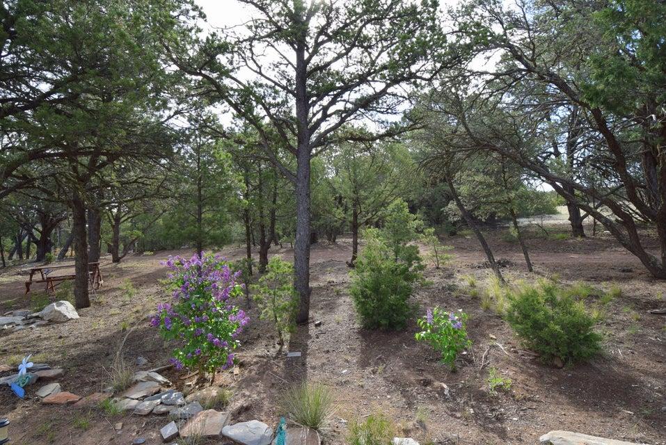 50 Vista Del Sol, Tijeras, NM 87059