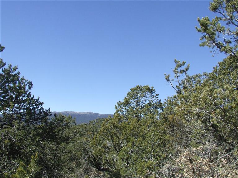 91 Lost Valley Loop, Cedar Crest, NM 87008