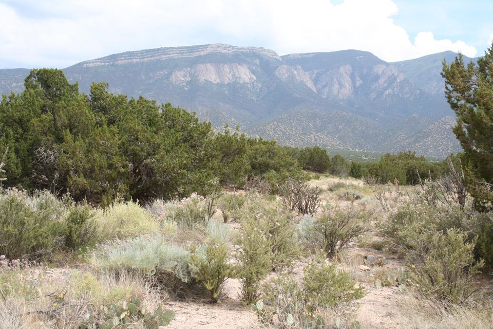 Apache Mesa Lot 11, Placitas, NM 87043