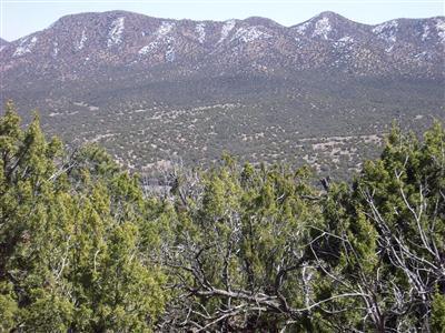31 La Cantera, Sandia Park, NM 87047