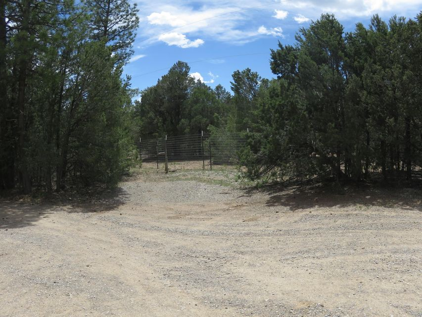 383 Juan Tomas Road, Tijeras, NM 87059