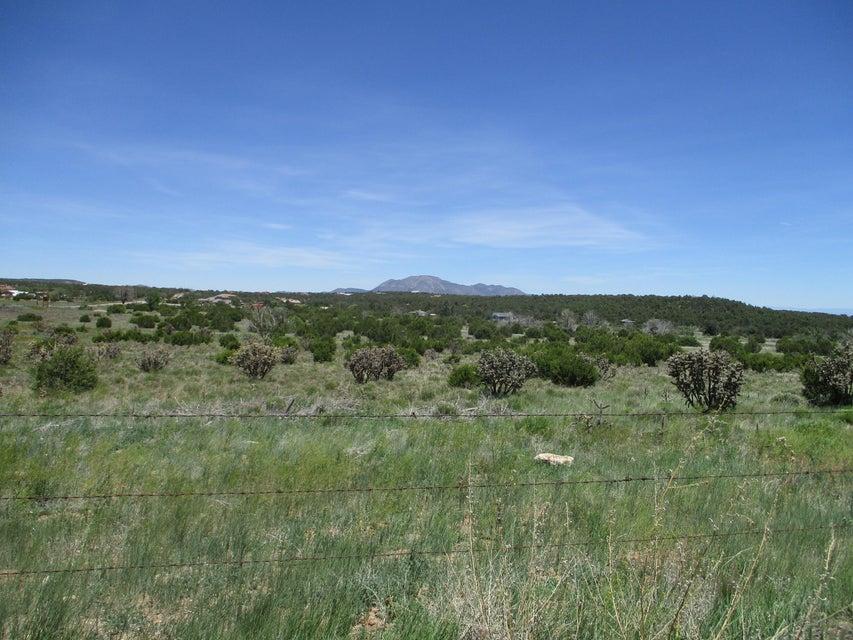 Garcia Loop, Edgewood, NM 87015