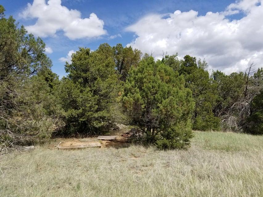 38 Bearcat Road # A, Tijeras, NM 87059