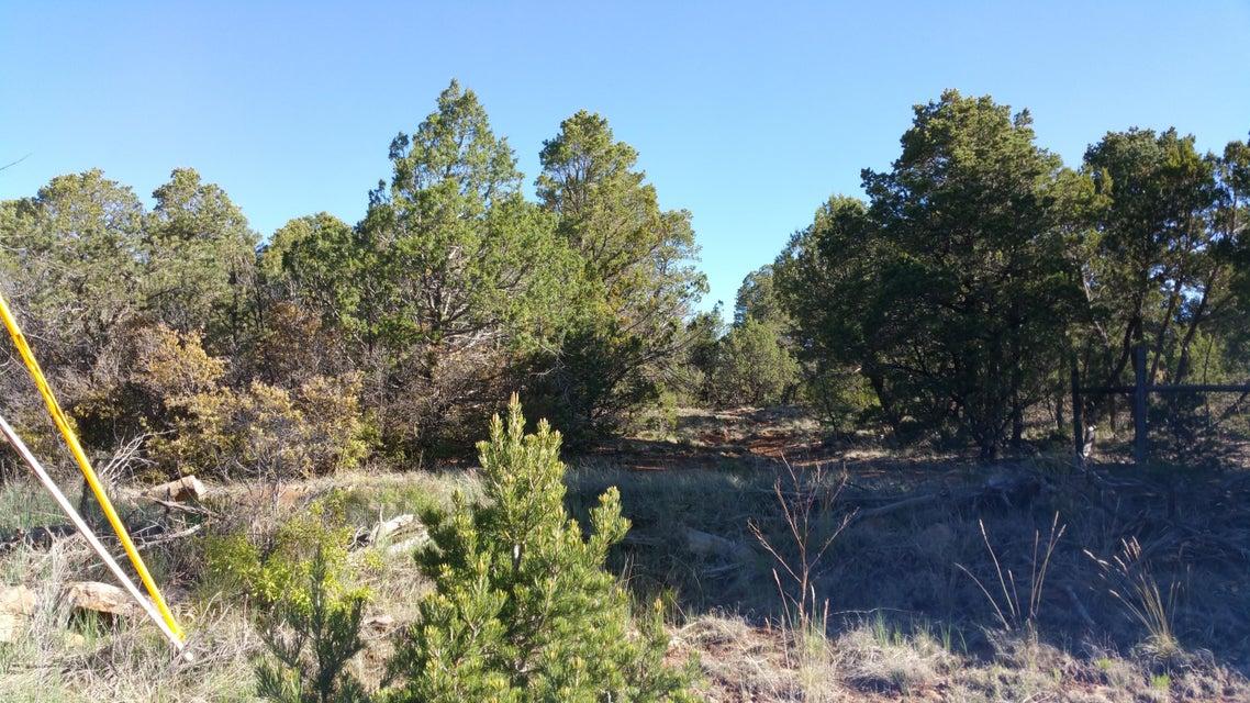 41 Mcdonald Road, Edgewood, NM 87015
