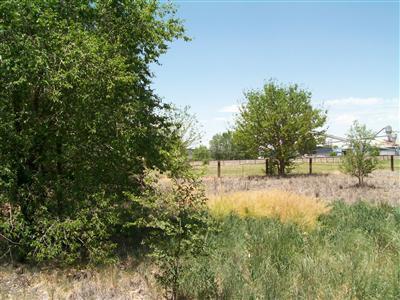 7613 Edith N/a Road NE, Albuquerque, NM 87113