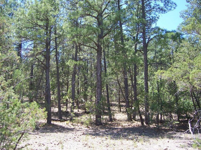 52 Ramble Wood Boulevard, Tijeras, NM 87059