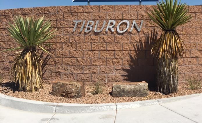 7900 Tiburon Hills Drive NW, Albuquerque, NM 87120
