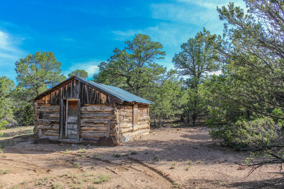 Off Highway 217, Tijeras, NM 87059