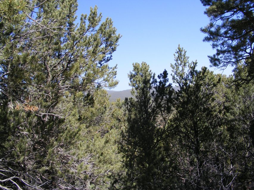 8 Mulberry Loop, Cedar Crest, NM 87008