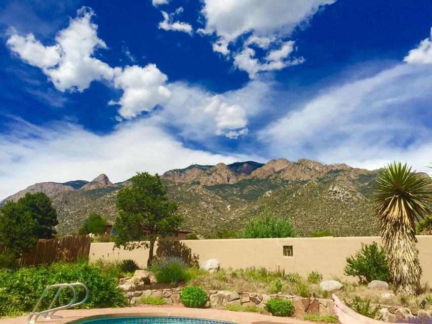 646 Cougar,Albuquerque,New Mexico,United States 87122,3 Bedrooms Bedrooms,2 BathroomsBathrooms,Residential,Cougar,922516