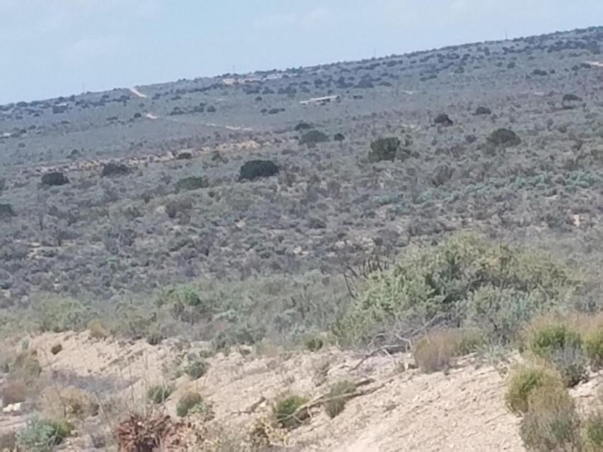 405 Hondo Road NW, Rio Rancho, New Mexico