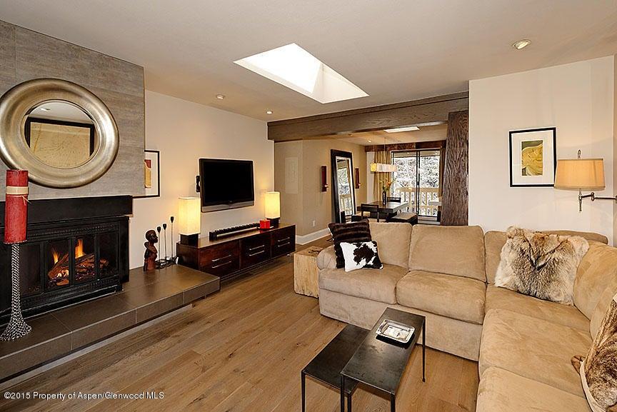 1028 Hopkins Avenue,Aspen,Colorado 81611,2 Bedrooms Bedrooms,2 BathroomsBathrooms,Residential Rentals,Hopkins,141039