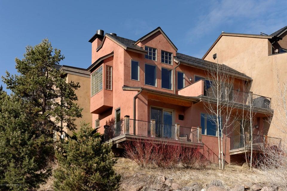 206 Wild Spring Lane, Basalt, CO 81621