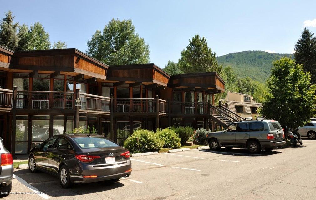 803 E Durant Avenue 3, Aspen, CO 81611