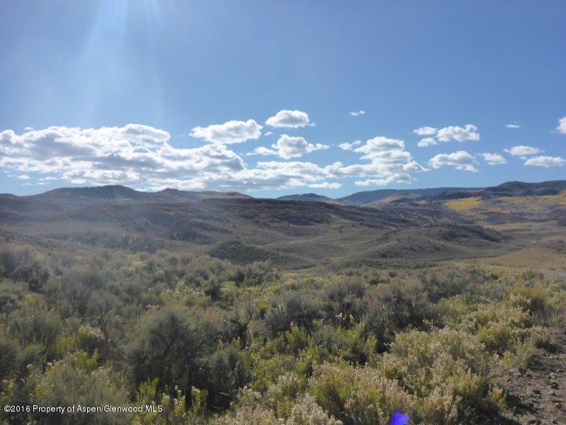 Tbd Harrison Creek, Collbran, CO 81624