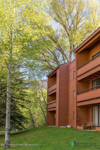 1233 Vine Street 1233, Aspen, CO 81611
