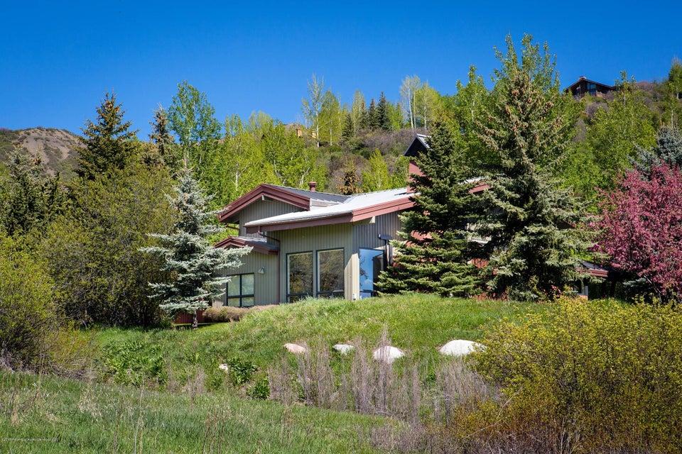 46 Meadow Road, Snowmass Village, CO 81615