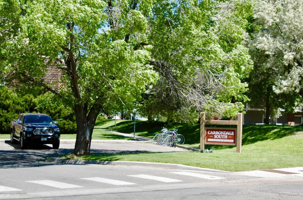 93 Meadow Wood Drive A3, Carbondale, CO 81623
