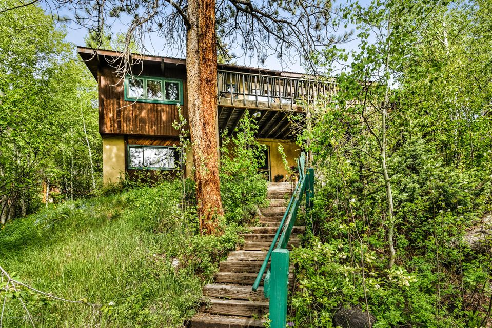 118 E Lupine Drive - East Aspen, Colorado