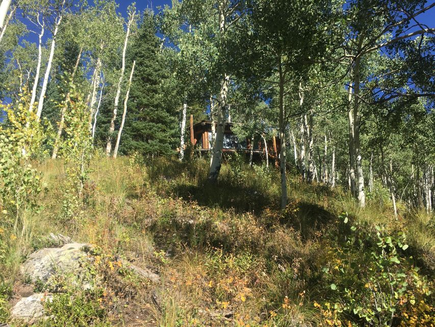 1001 Express Creek Road Aspen, Co 81611 - MLS #: 149816