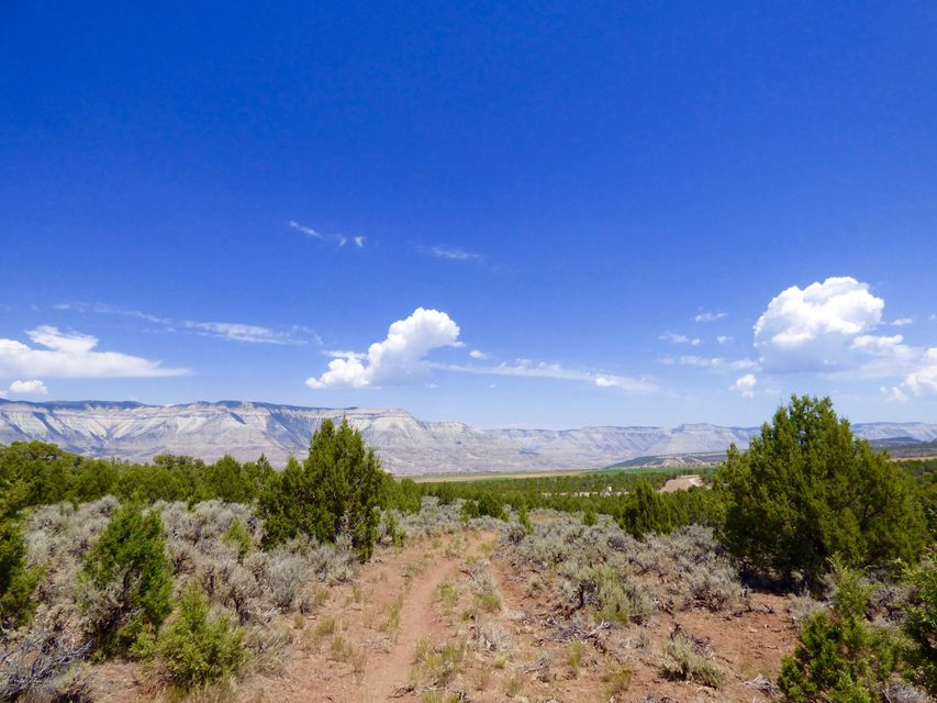 TBD House Top Mountain Road Collbran, Co 81624 - MLS #: 149871