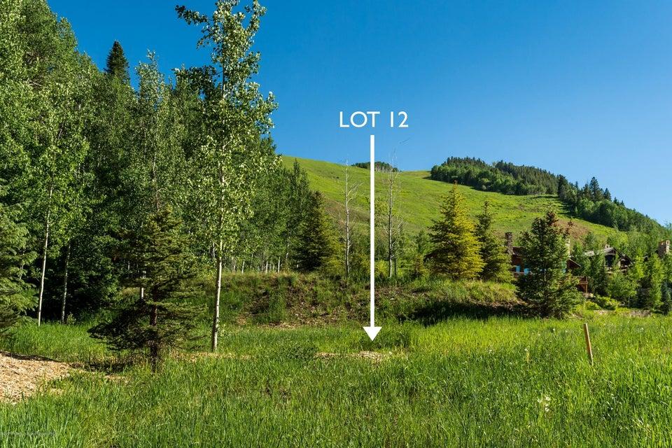 TBD Thunderbowl Lane #Lot 12 Aspen, Co 81611 - MLS #: 150058
