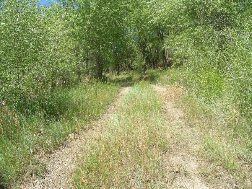 621 W Sopris Creek Basalt, Co 81621 - MLS #: 150121