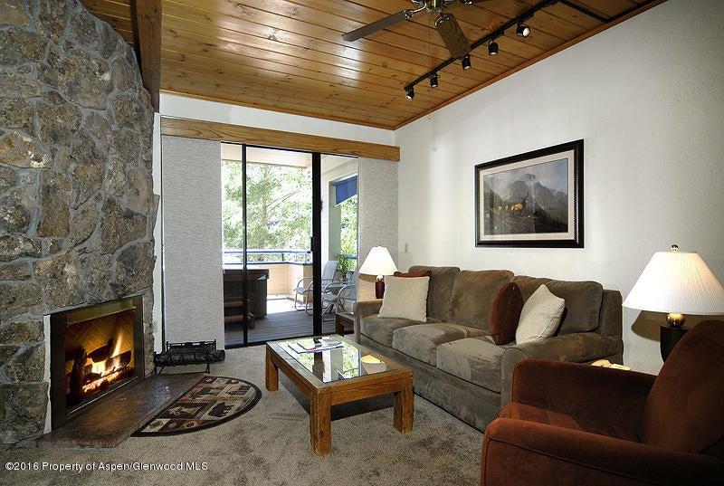 301 E Hyman Avenue #205 (Wks 13, 14, & 48) Aspen, Co 81611 - MLS #: 150113