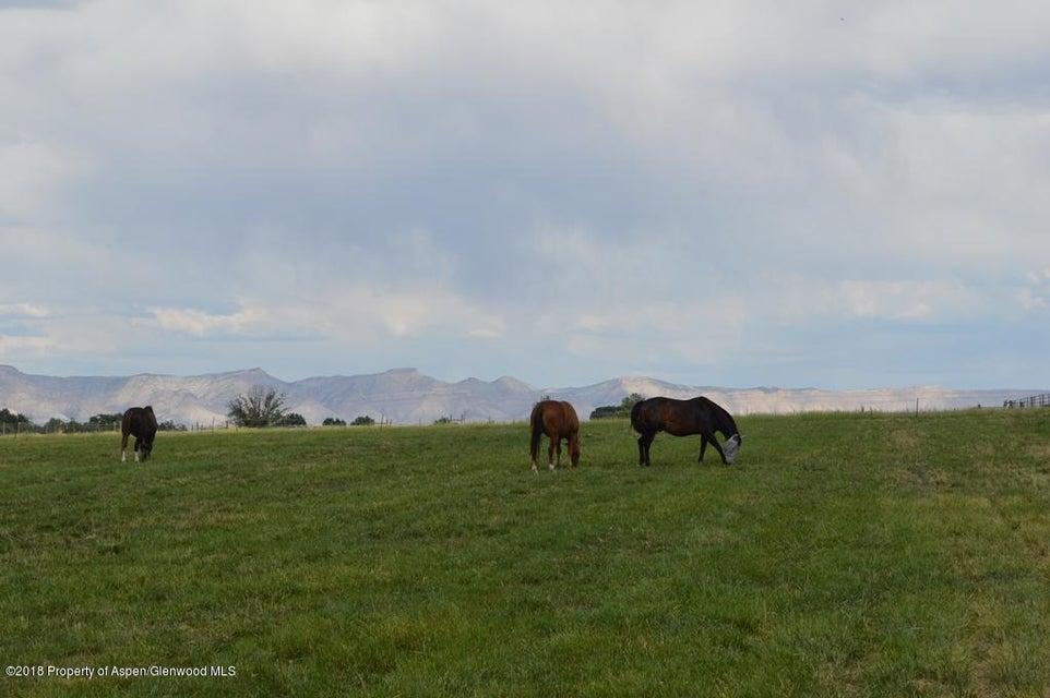 TBD 18 1/2 Road,Fruita,Colorado 81521,Lots and Land,18 1/2,155151