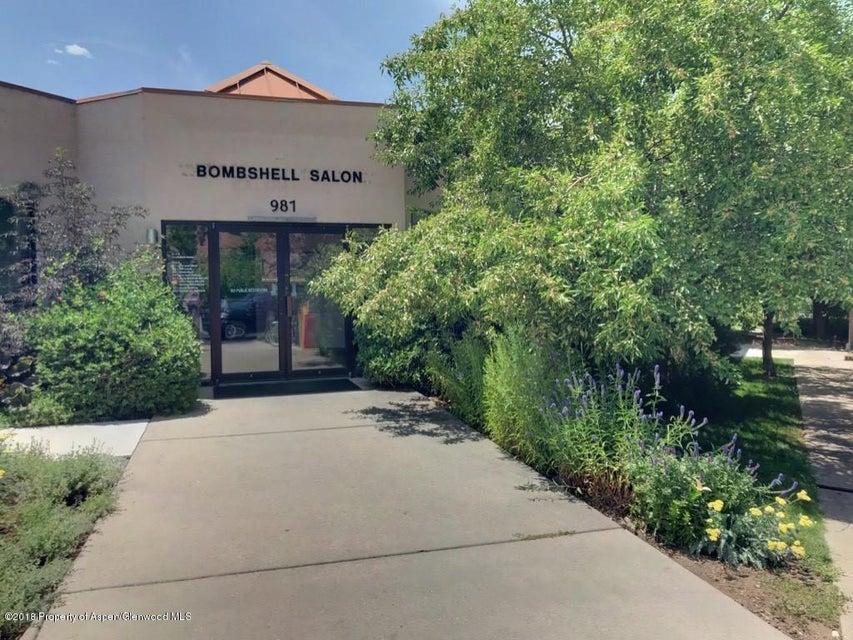 981 Cowen Drive,Carbondale,Colorado 81623,Commercial Leasehold,Cowen,155401