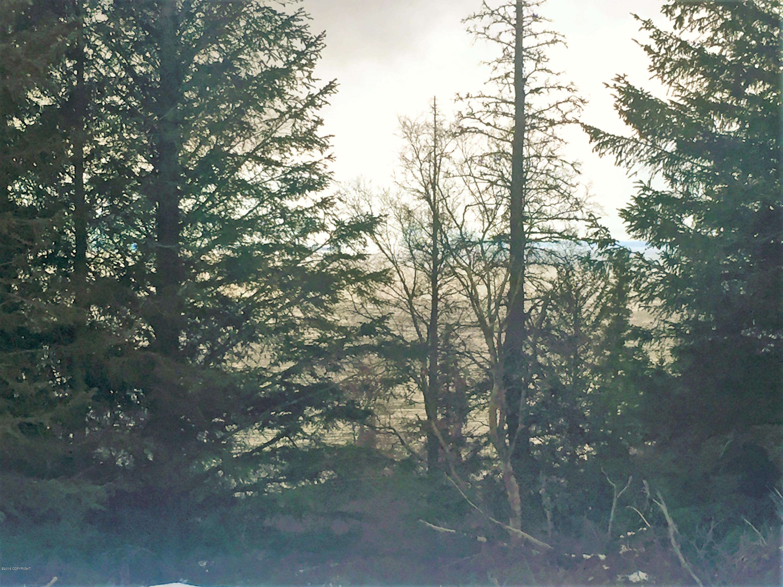 L1 B3 Potter Highlands Road, Anchorage, AK 99516