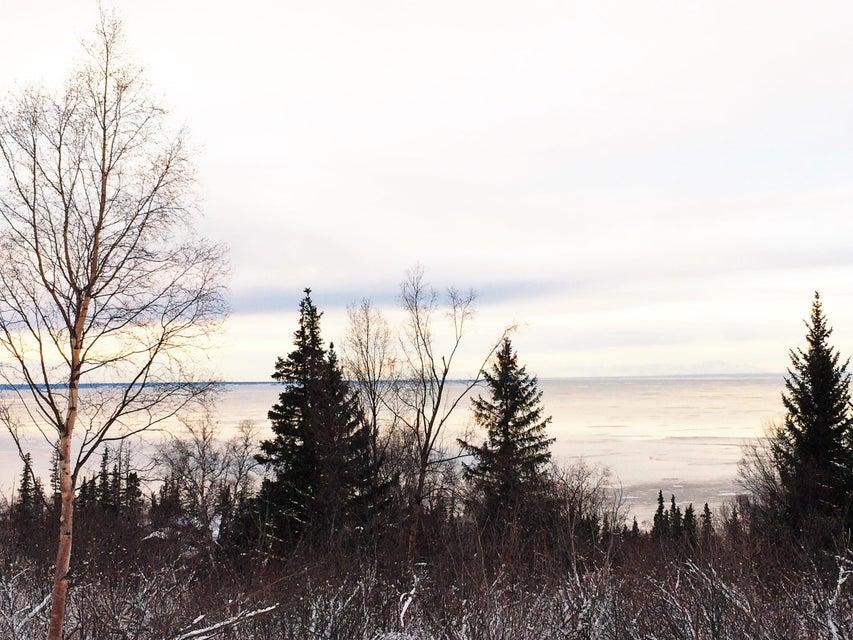 L11 B2 Potter Valley Road, Anchorage, AK 99516