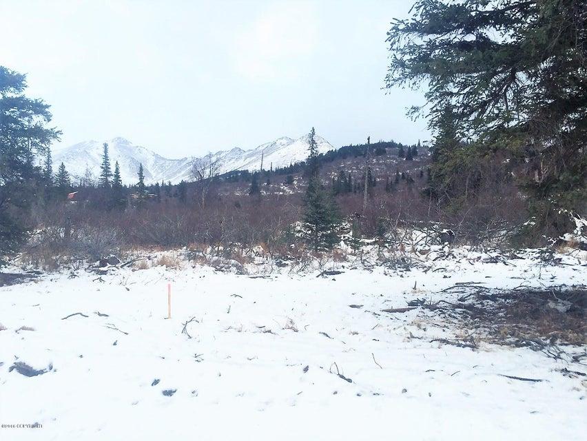 L2 B4 Potter Highlands Drive, Anchorage, AK 99516