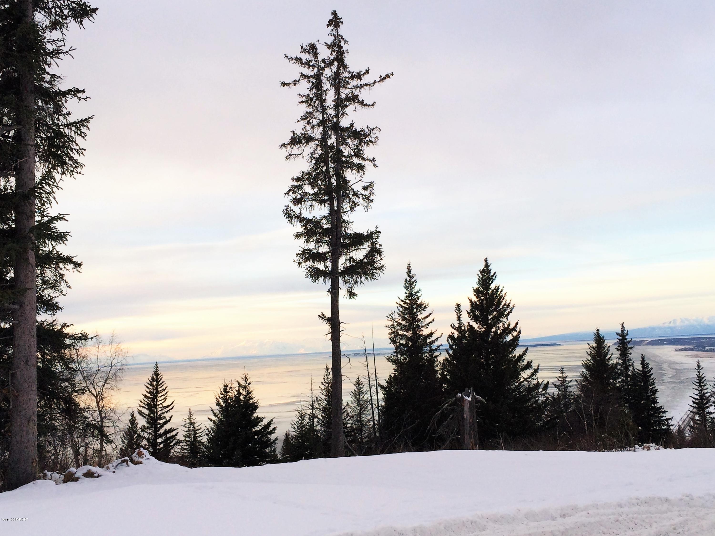 L6 B2 Potter Valley Road, Anchorage, AK 99516