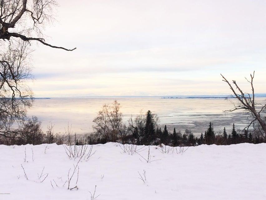 L9 B2 Potter Valley Road, Anchorage, AK 99516