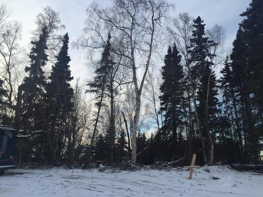 L27 B1A Chiniak Bay Drive, Anchorage, AK 99515