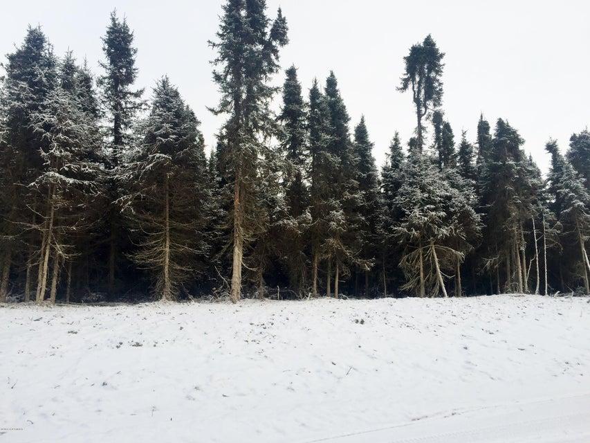 L4 B1A Chiniak Bay Drive, Anchorage, AK 99515