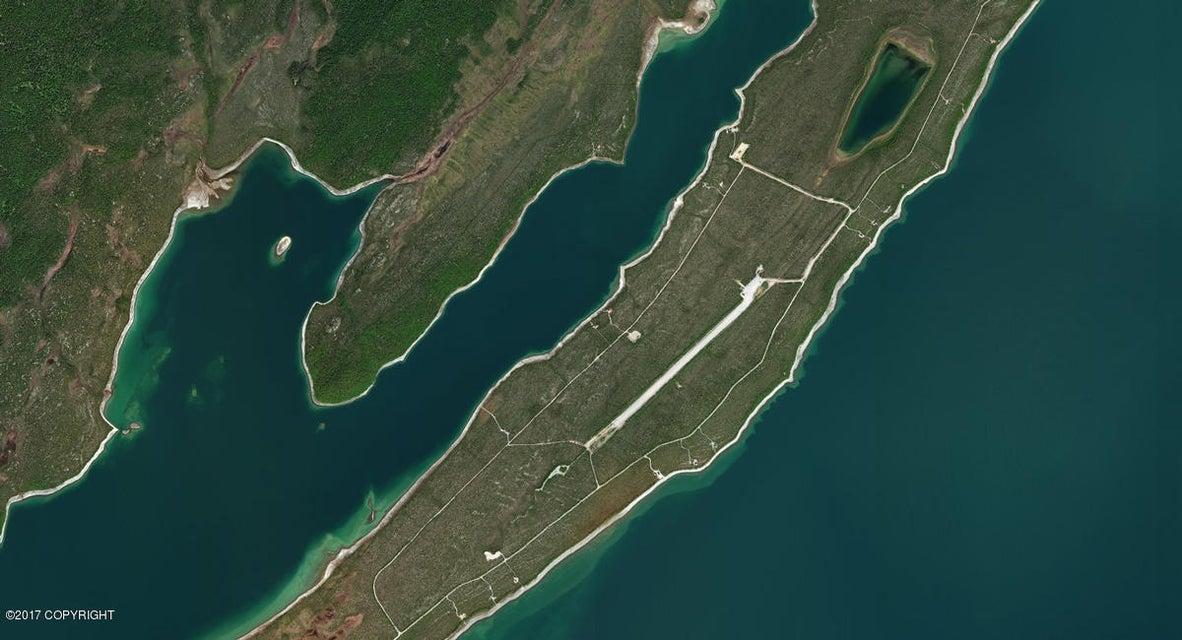, Port Alsworth, AK 99653