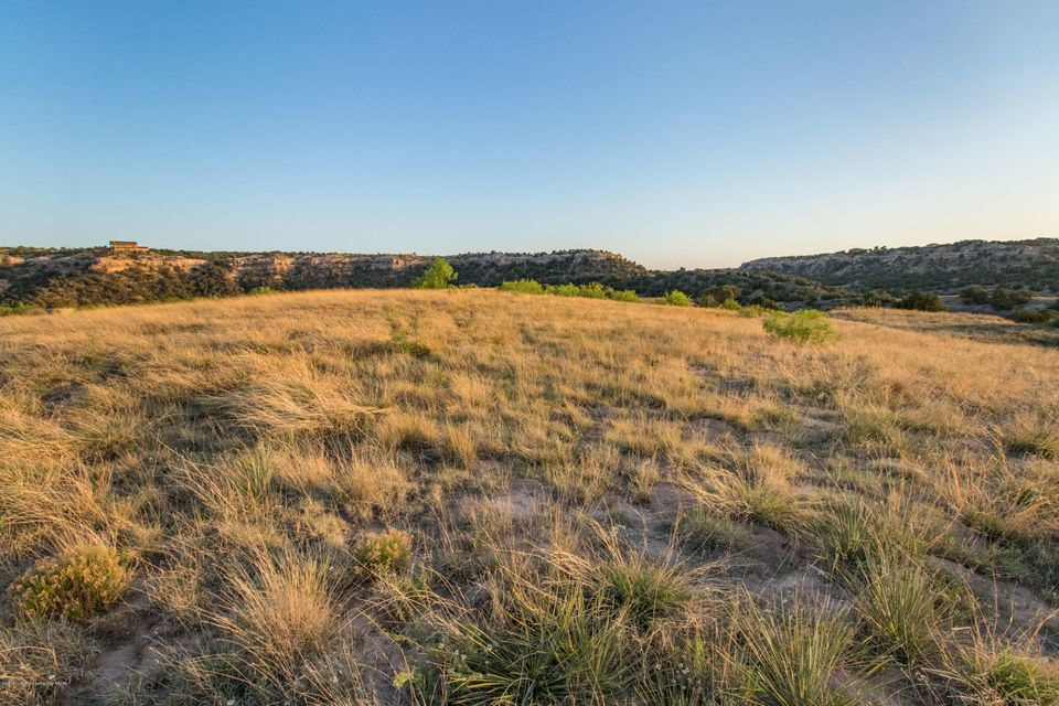 One of Amarillo Homes for Sale at 15750 CANYON PASS RD