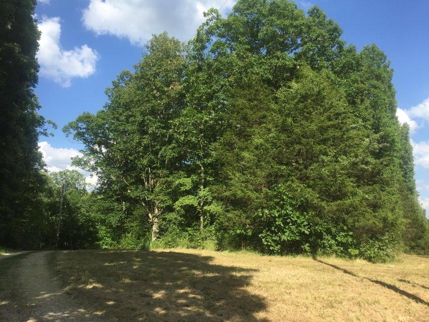1.4 acres TBD Mohegan Road, Williamsburg, MO 63388