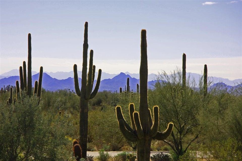 8893 E Buckskin Trail Lot 12, Scottsdale, AZ 85255
