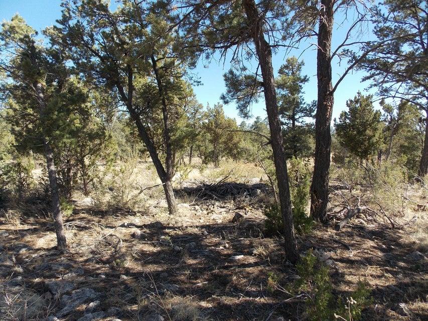 3155 Trails End Overgaard, AZ 85933 - MLS #: 5134469