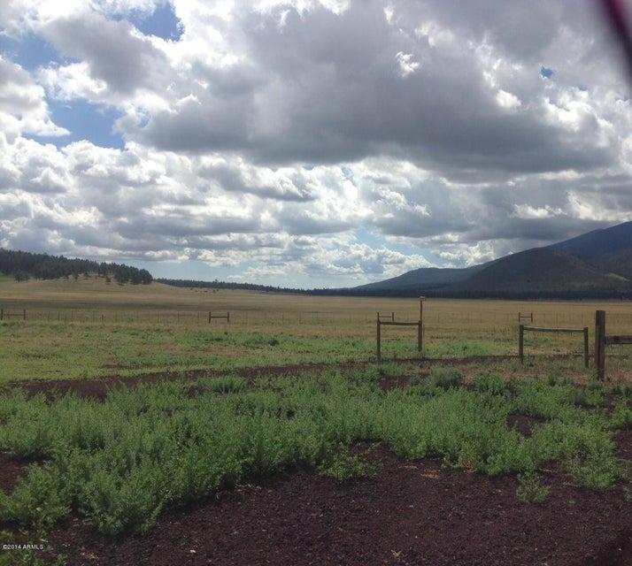13 Condor Road, Flagstaff, AZ 86001