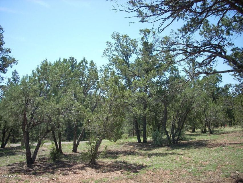 2836 Thunderbolt Circle Overgaard, AZ 85933 - MLS #: 5149347
