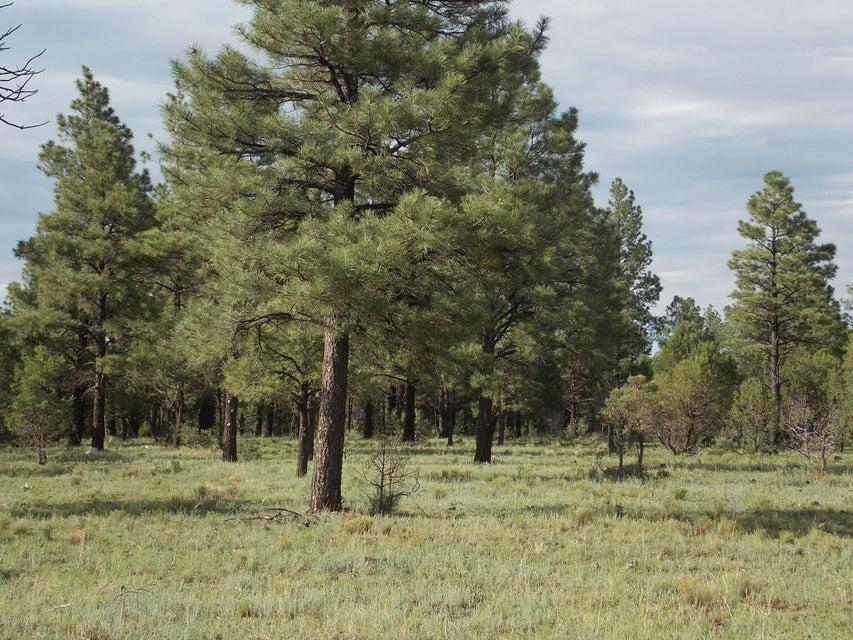 L 1 Porter Mountain Road Lakeside, AZ 85929 - MLS #: 5160612