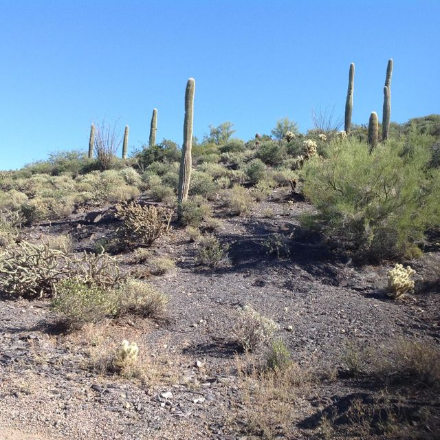XXXXX N Sunset Trail Lot 17, Cave Creek, AZ 85331